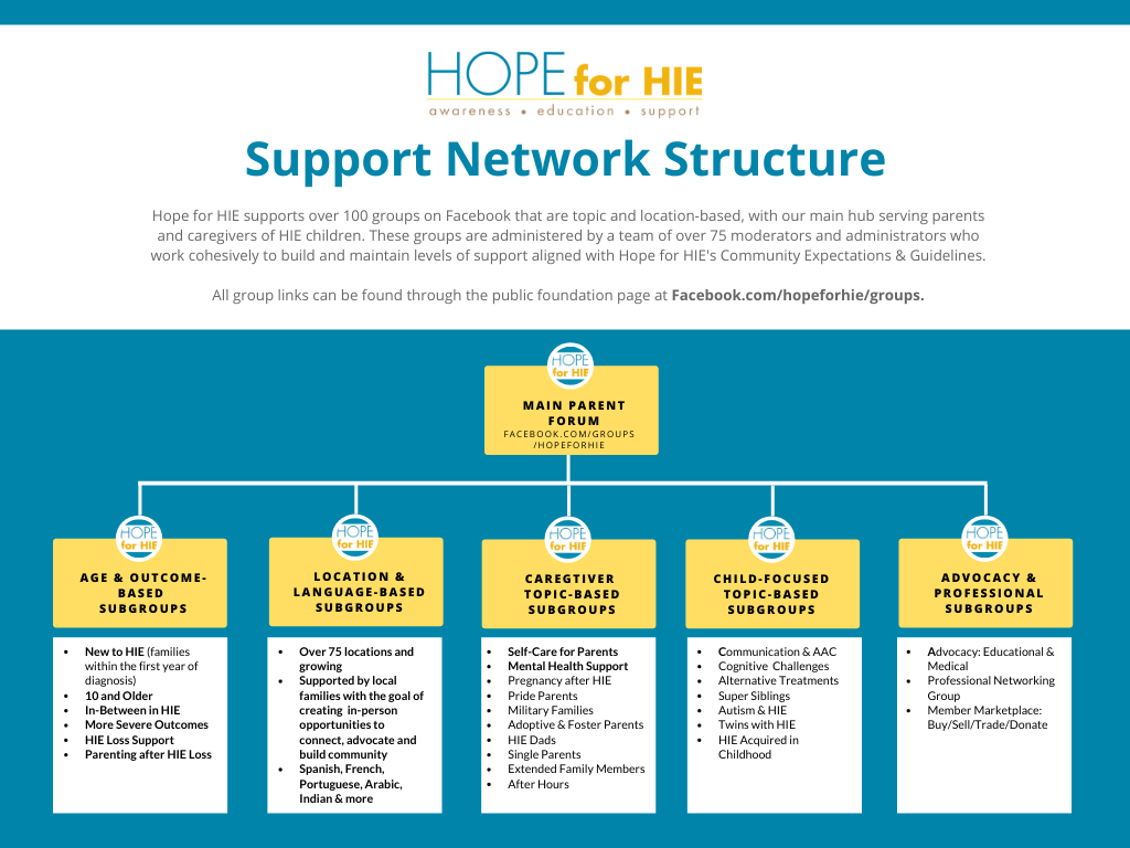 Hope_for_HIE_Online_Support_Structure.png