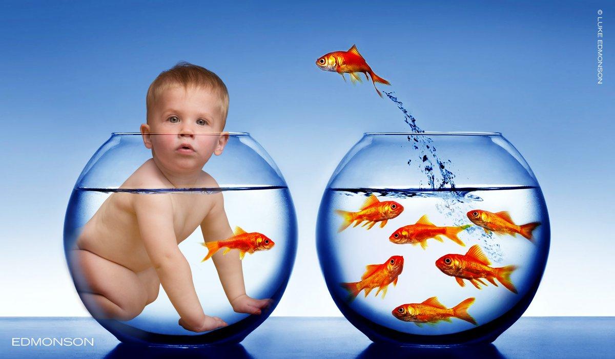 Baby-Fish-Bowl.jpg