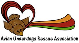 Avian-Underdogs-Rescue-Association