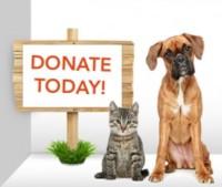 Donate-today-200x169.jpg