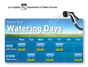 Know Your Watering Days Image (En)