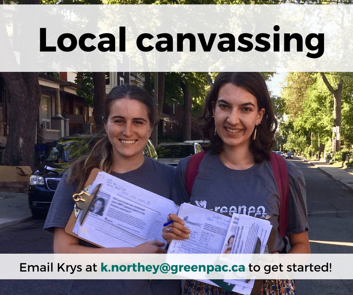 local_canvassing_-_greg_EN-min.png