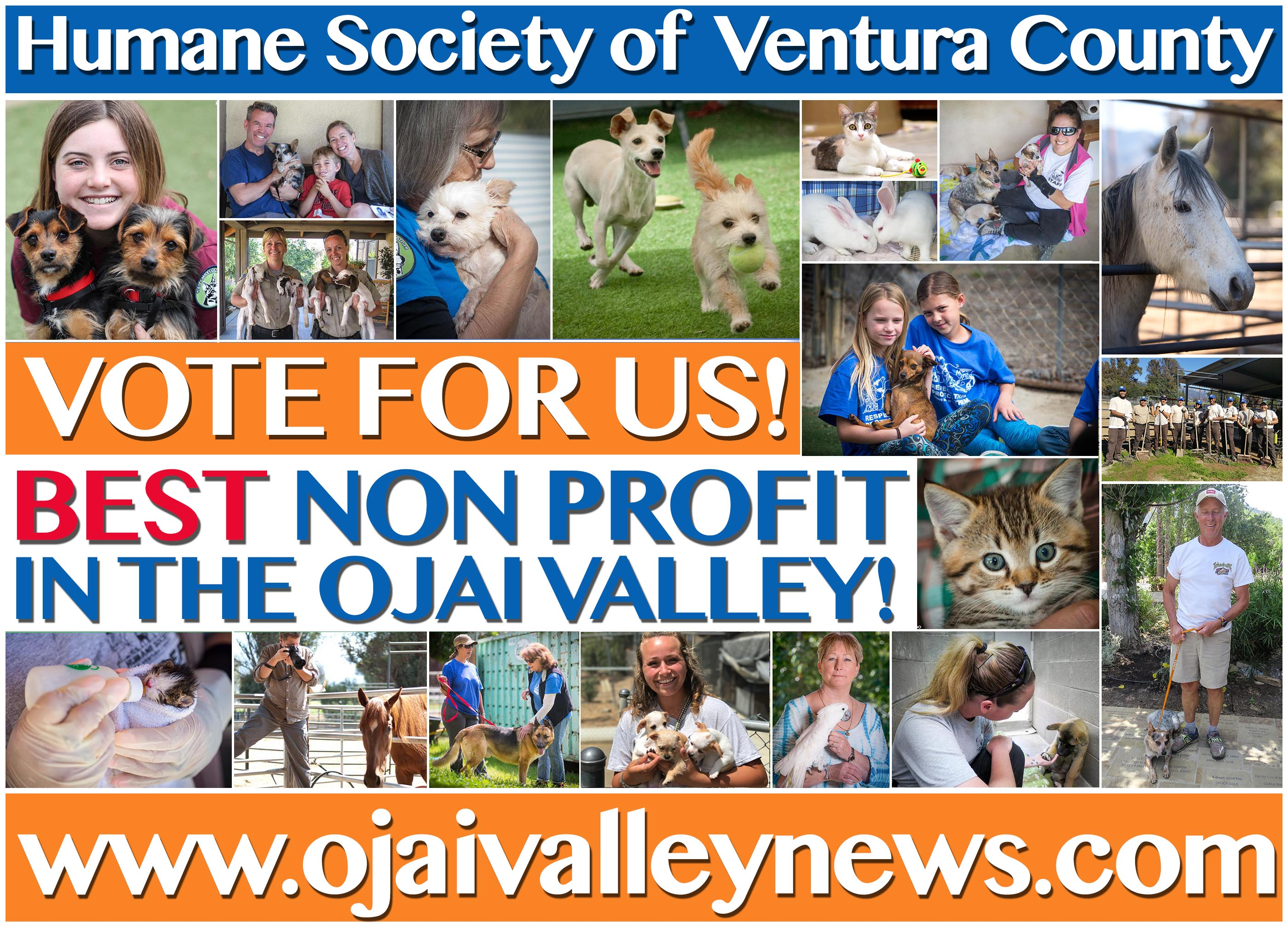 vote.for.us2017.Ojai_Valley_News.jpg