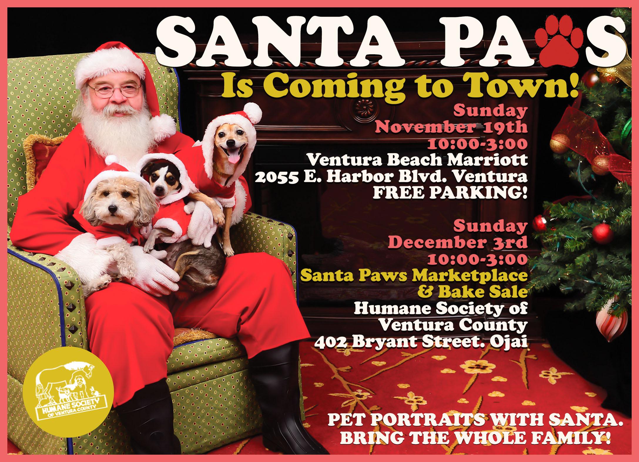 Santa.Paws.Postcard.10.11.jpg