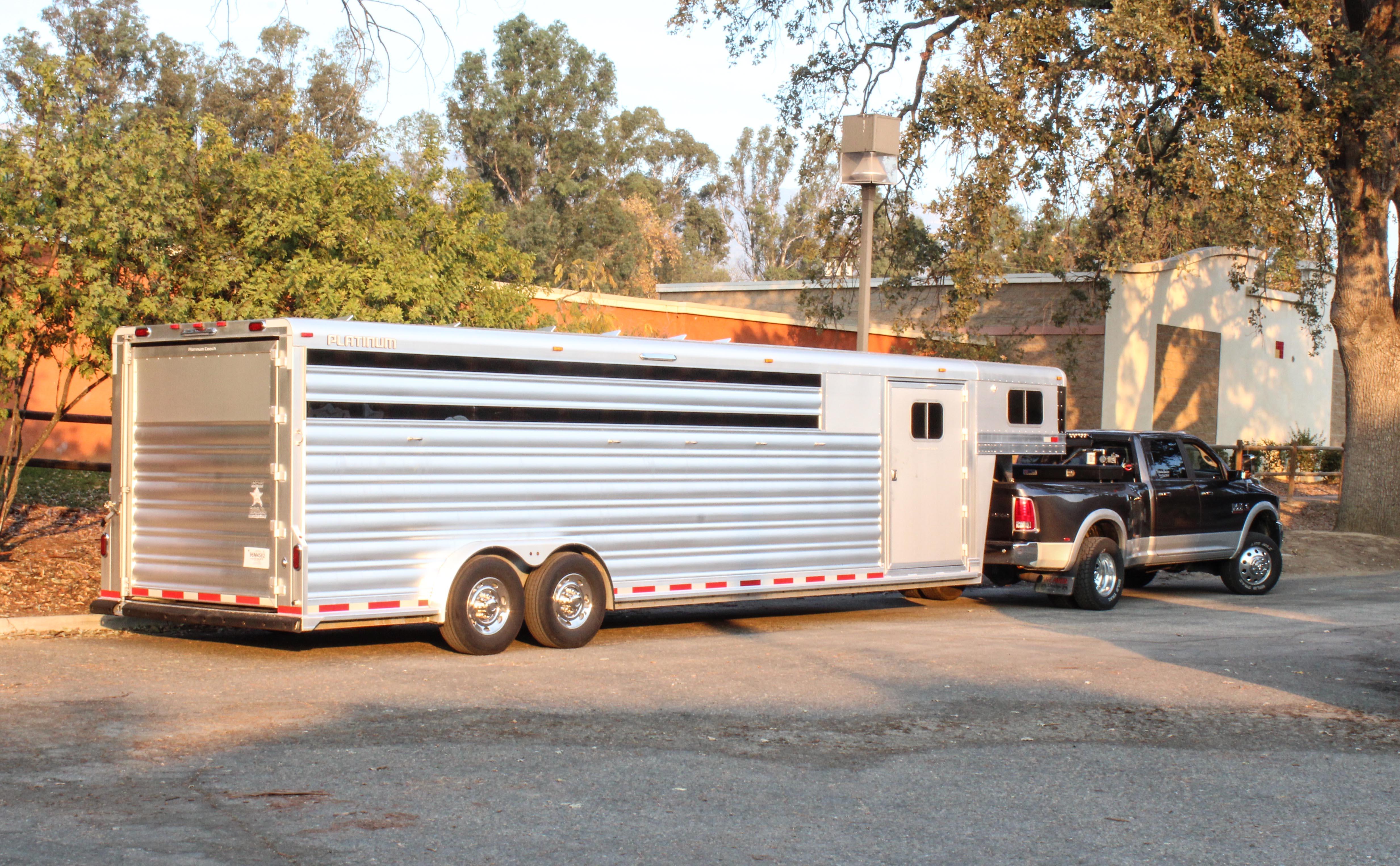 soul.horse.trailer.jpg