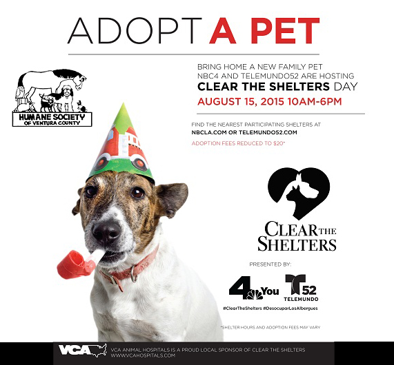 Clear-the-Shelters-Flyer_copy.jpg