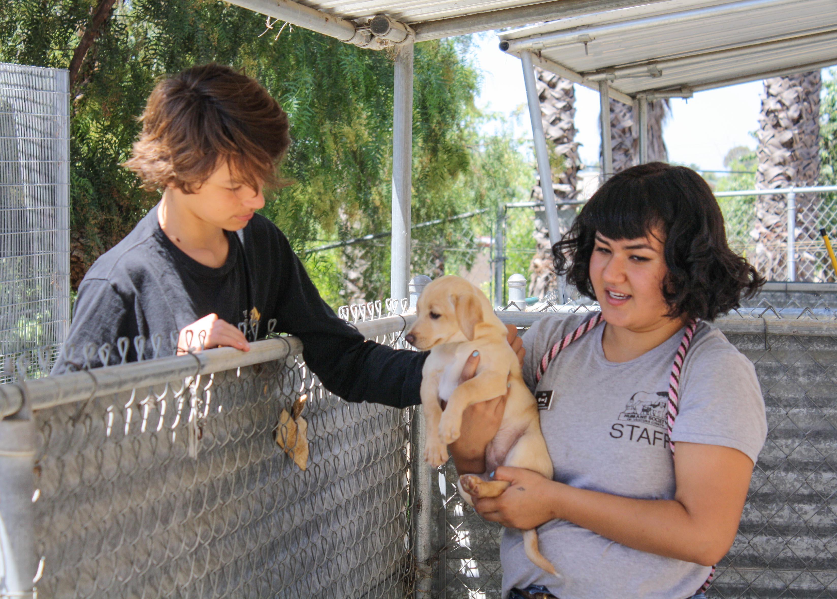 alexis.puppy.jpg