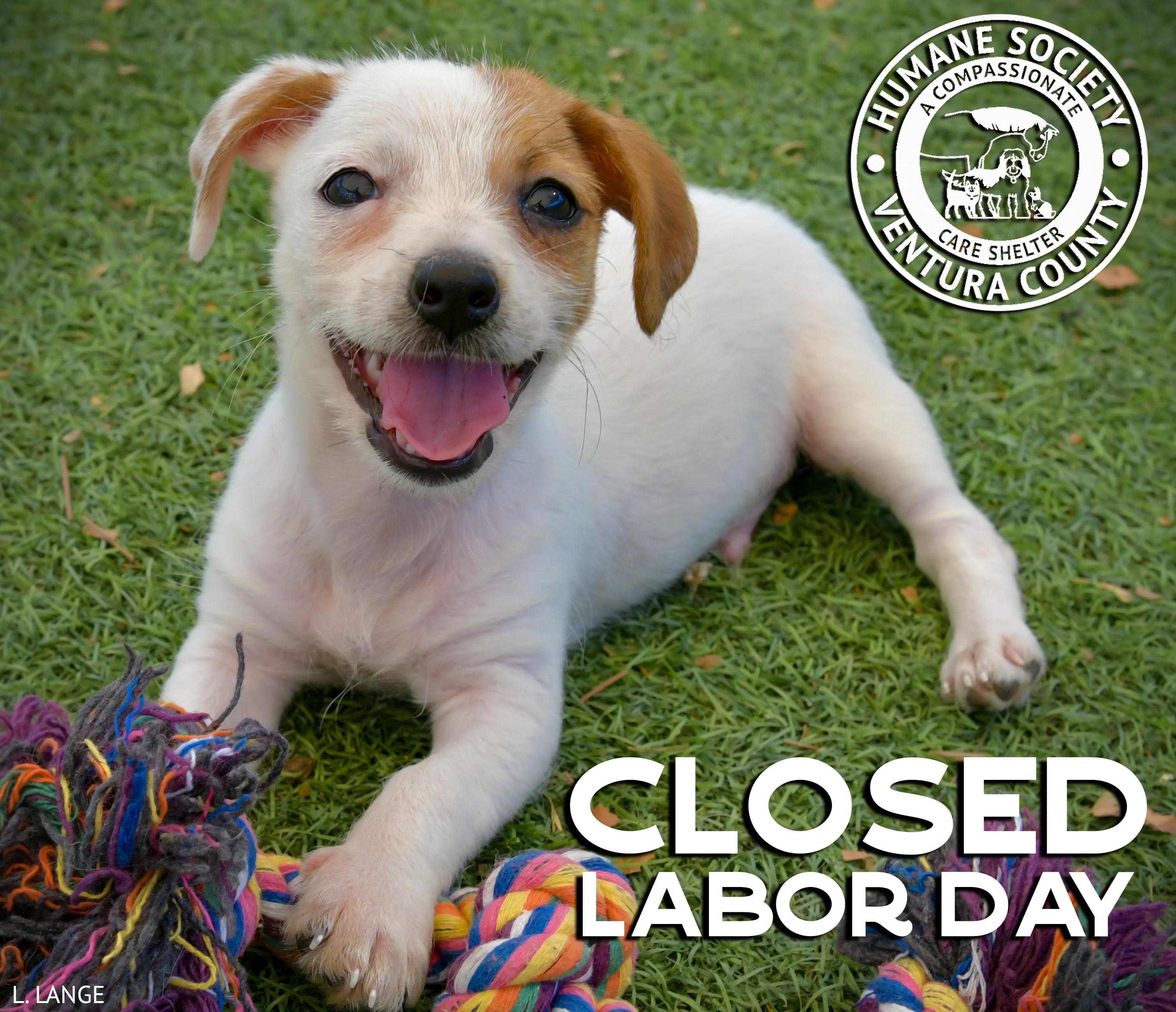 Closed.labor.day.jpg