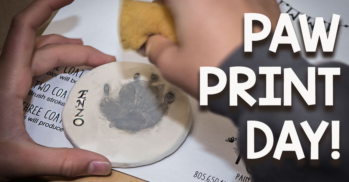 pawprint.day.facebook.banner.jpg