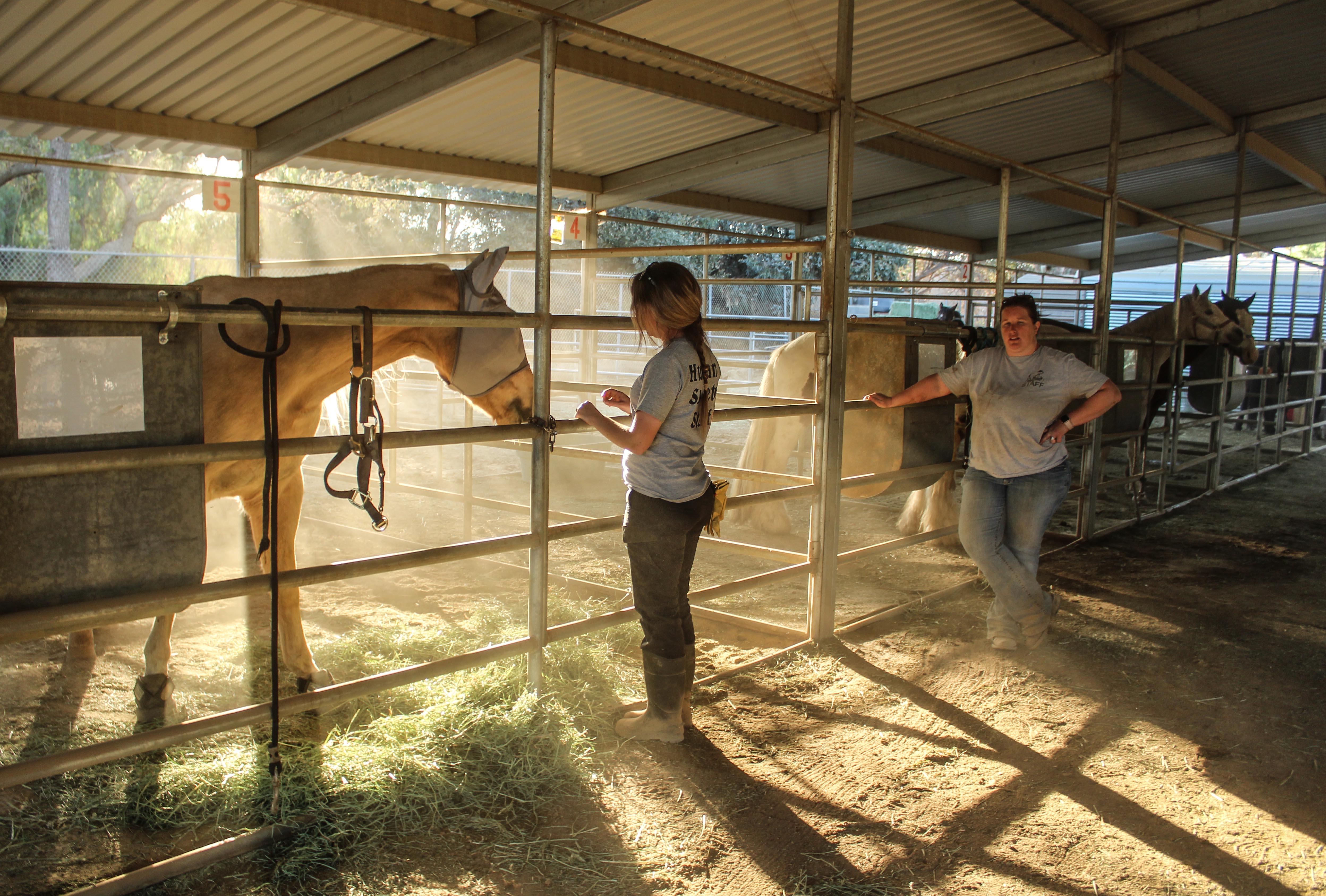 horse.barn.kendra.christina.jpg