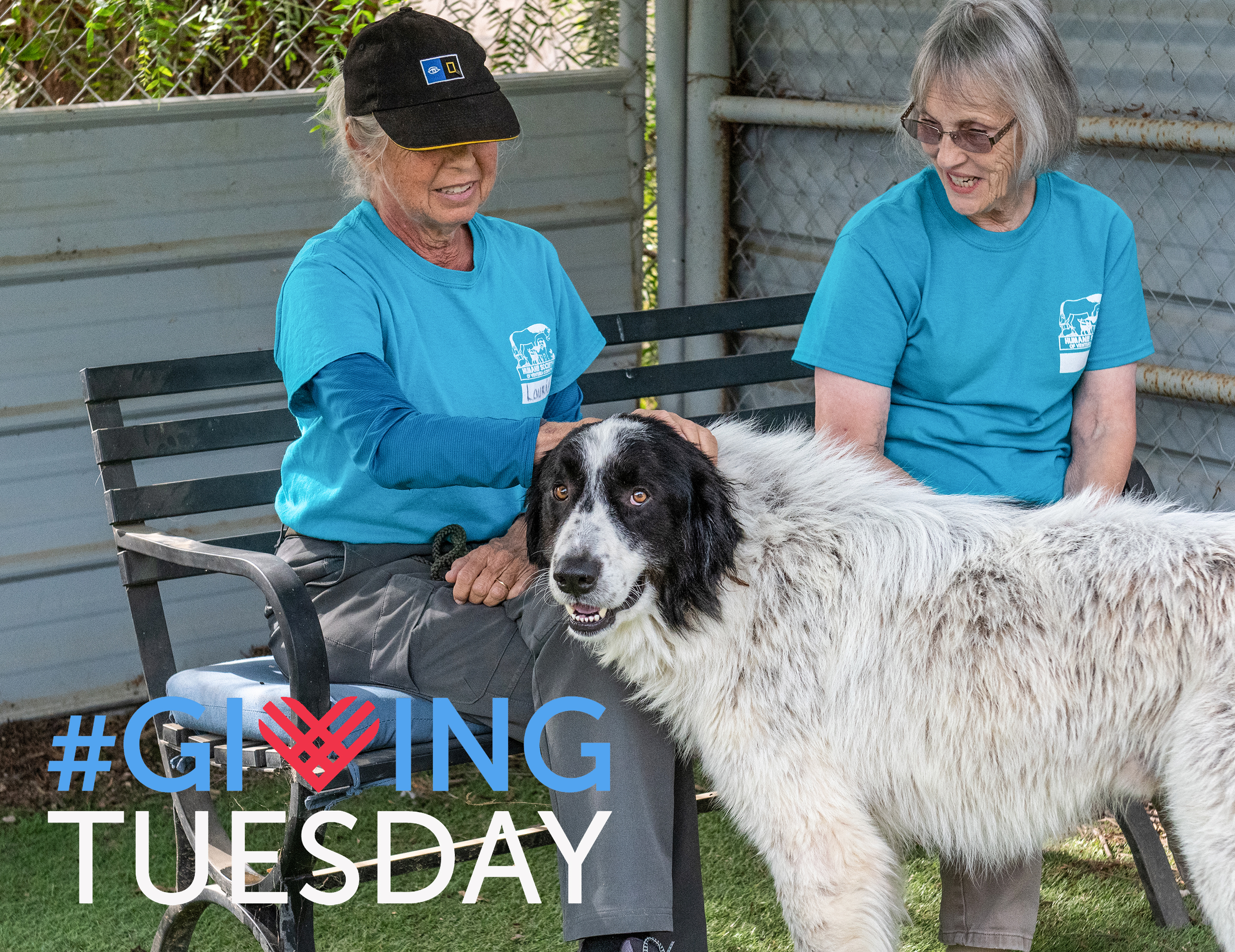 giving_tuesday_2019.jpg