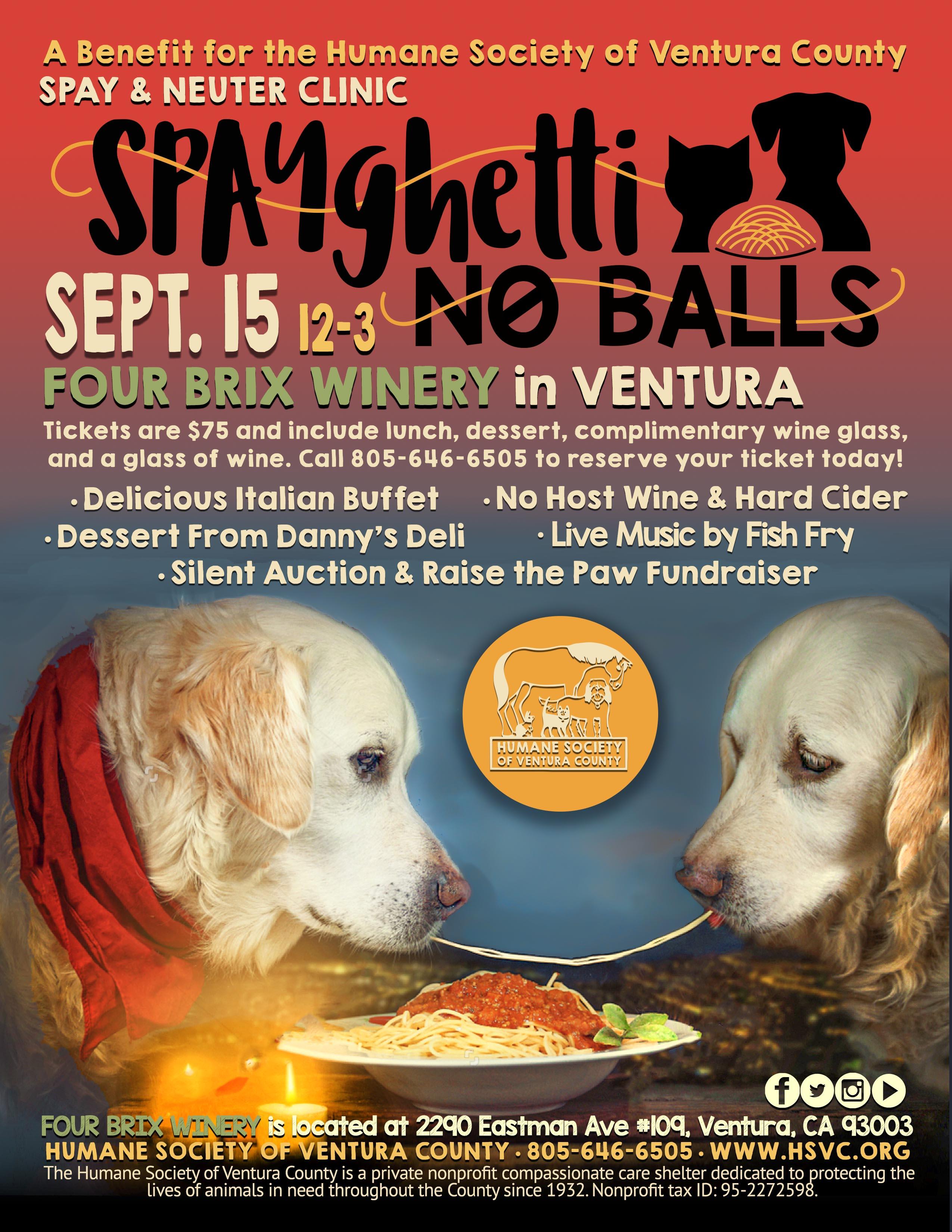 spayghetti.flyer.2019.jpg
