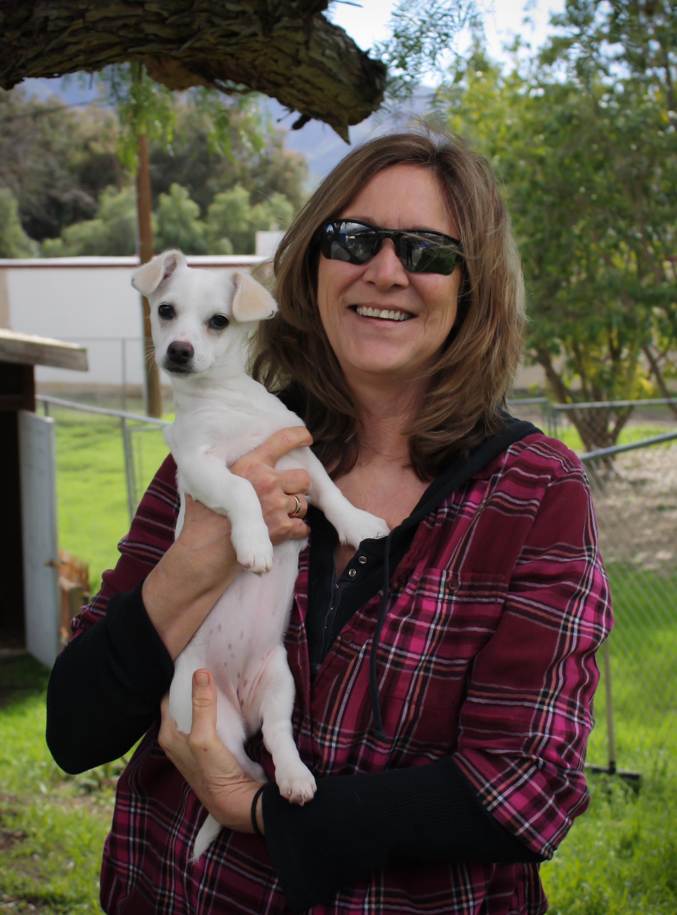 arlene.puppy.profile.jpg