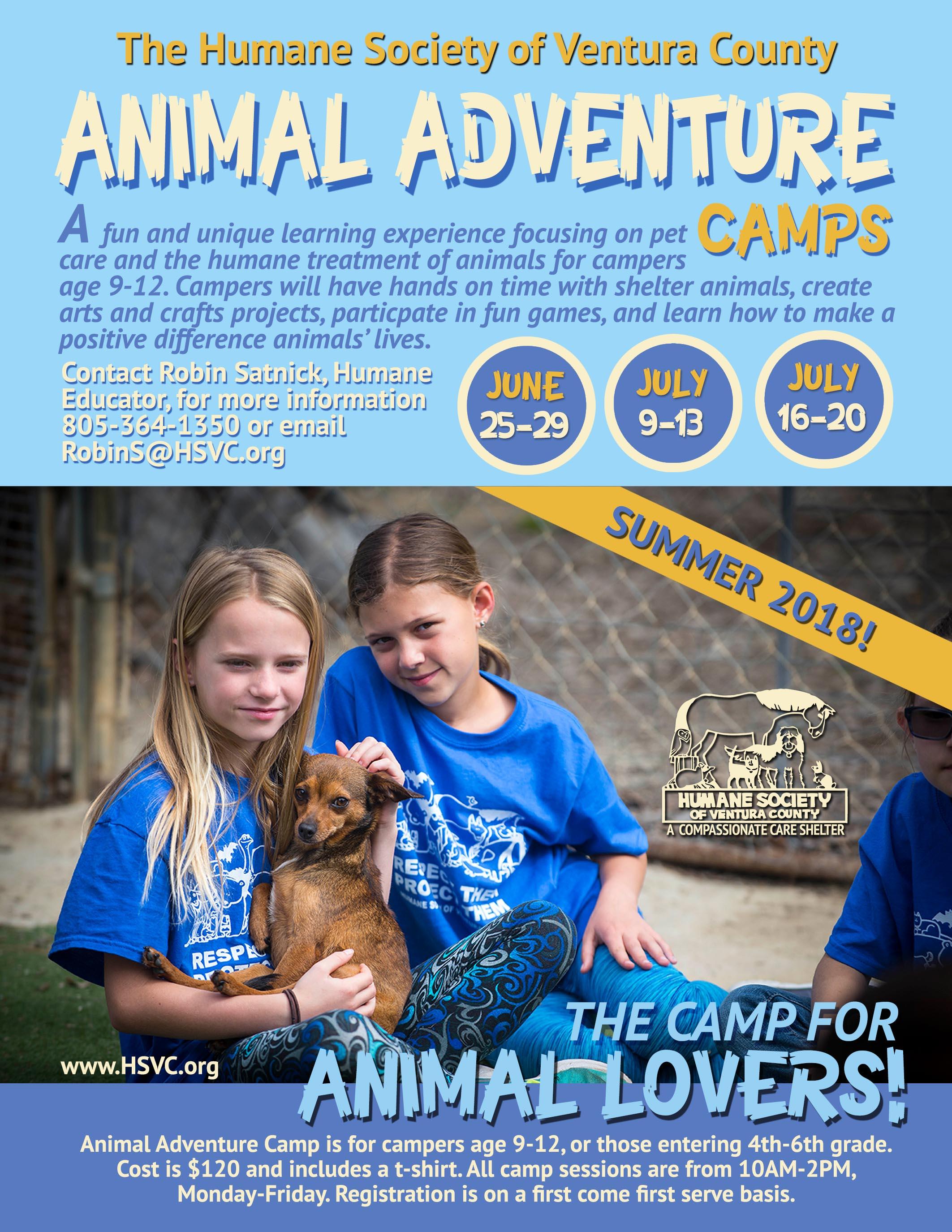 Summer.2018.camp.flyer.jpg