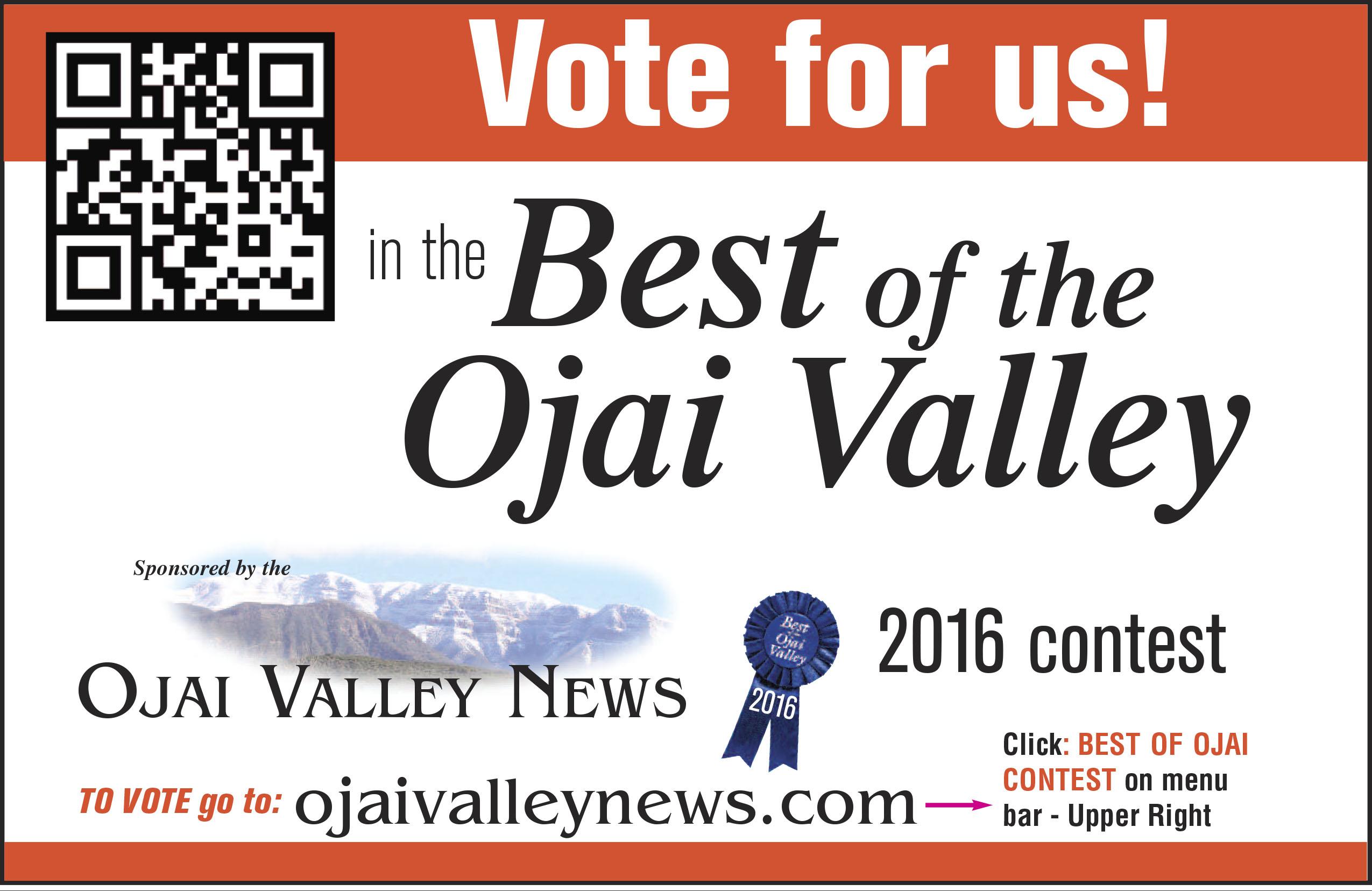 BOO_Vote_2_per_page_2016.jpg