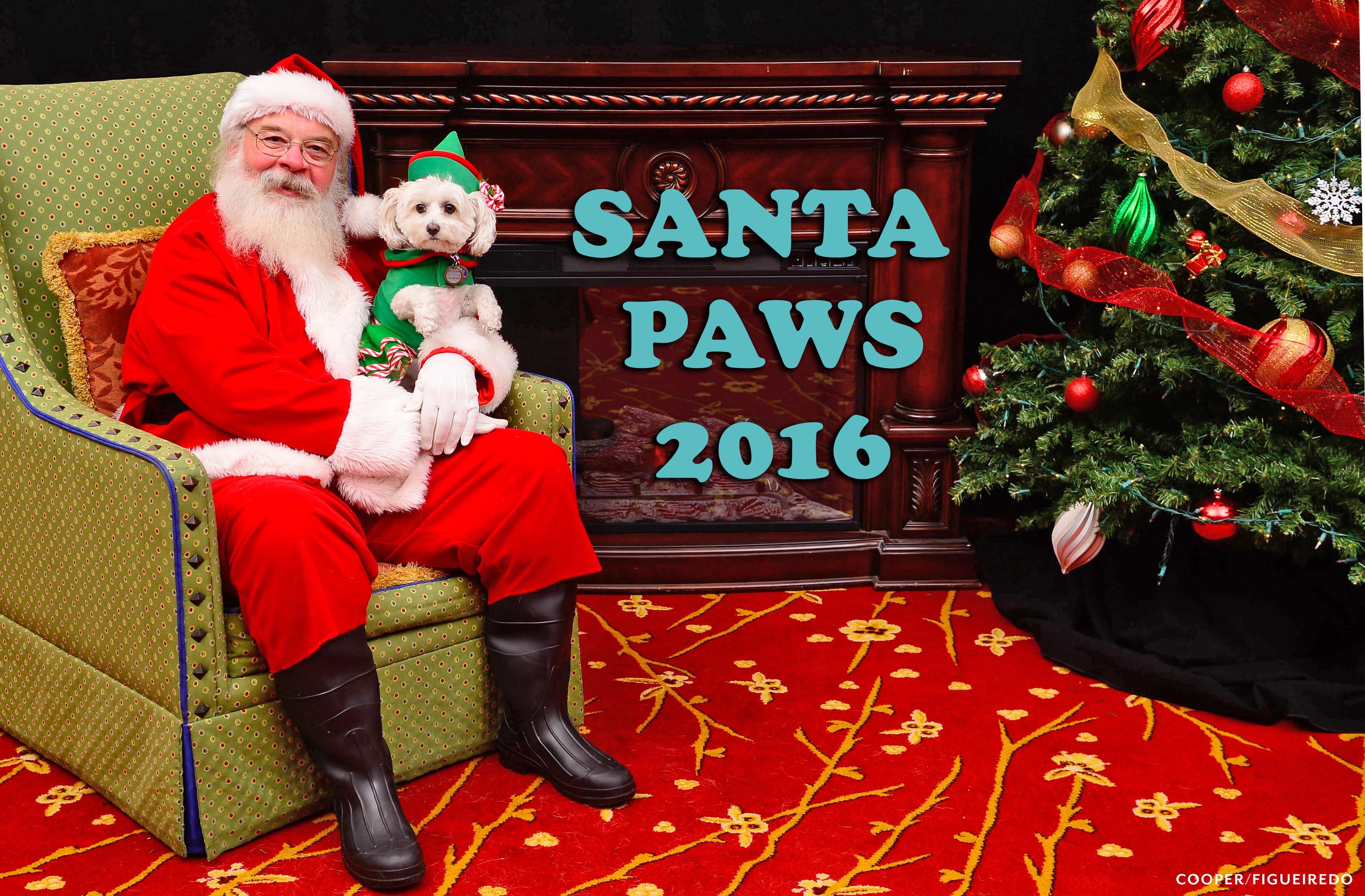 Santa.paws.2016.jpg
