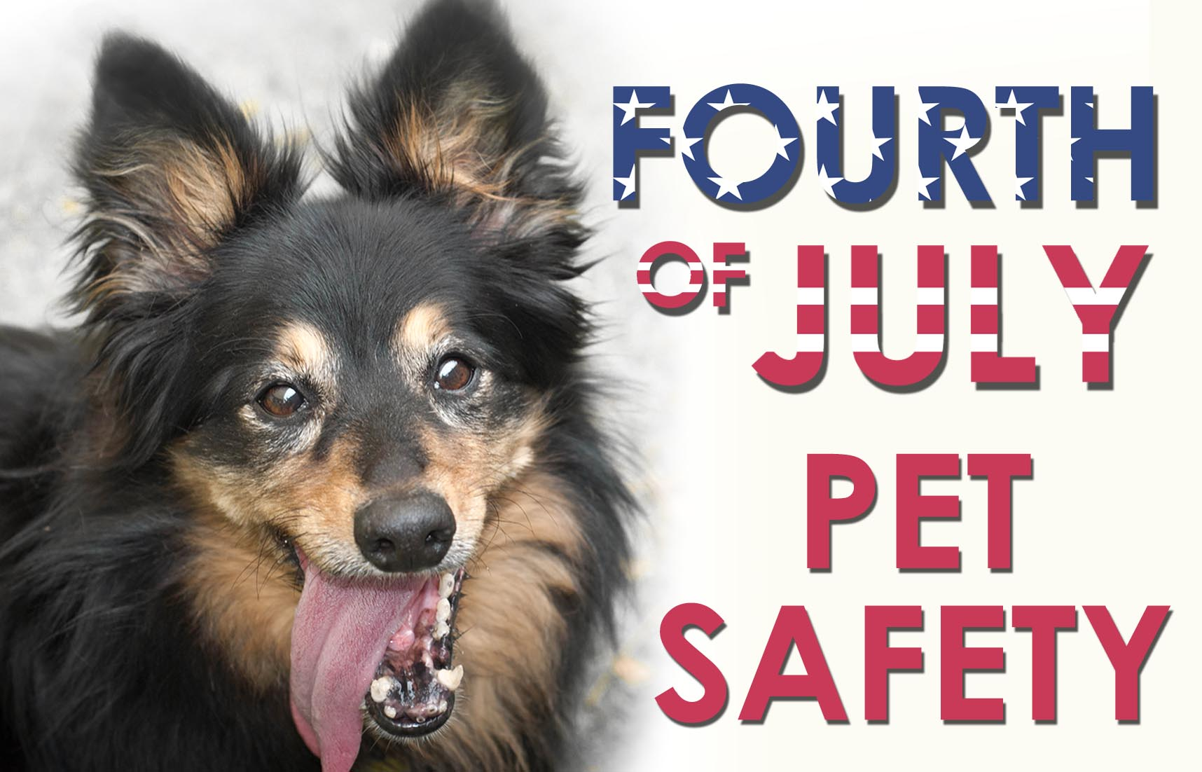 fourth.july.pet.safety.2017.jpg