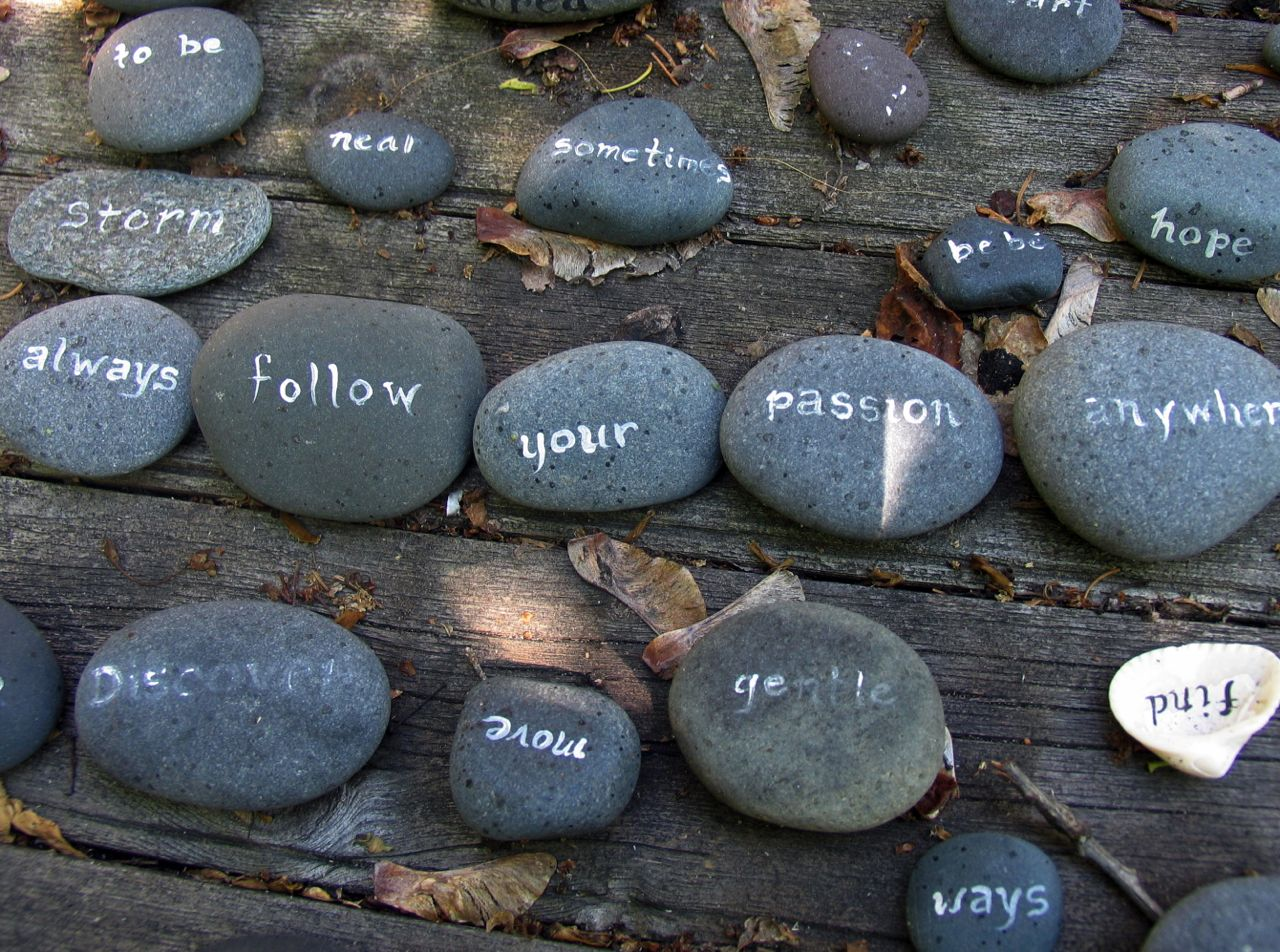 always-follow-your-passion-rocks-up_2501.jpg
