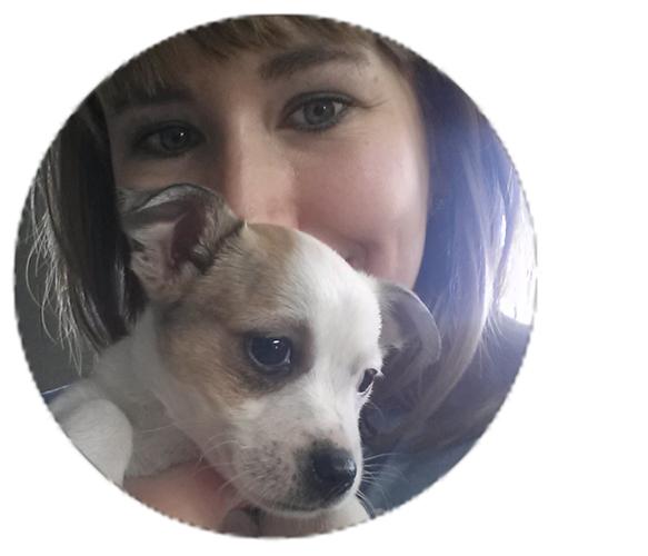 DANA_ZILLGITT_writer_bio(1).jpg