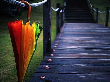 umbrella_2.jpg