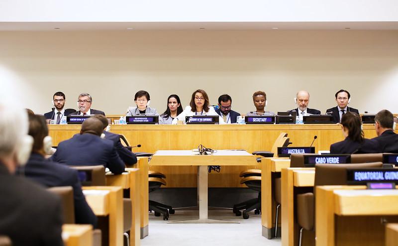 Elayne Whyte-Gomez chairs TPNW negotiations