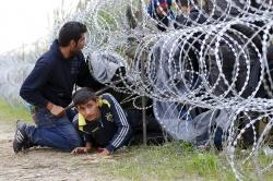 migrants-hungary-eu-fence_sml_(1).jpg