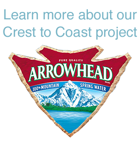 arrowhead-crest.png