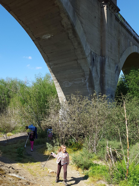 volunteerbridge.jpg