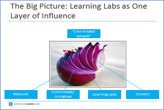 Learning Labs as a Layer of Influence - Picturing a Red Onion