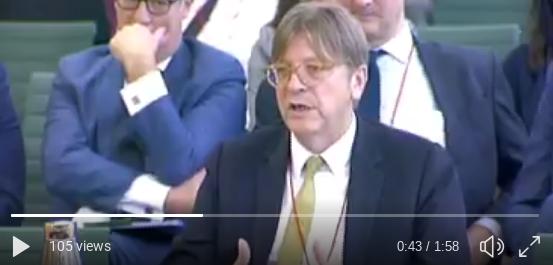 vidVerhofstadtmigration.png