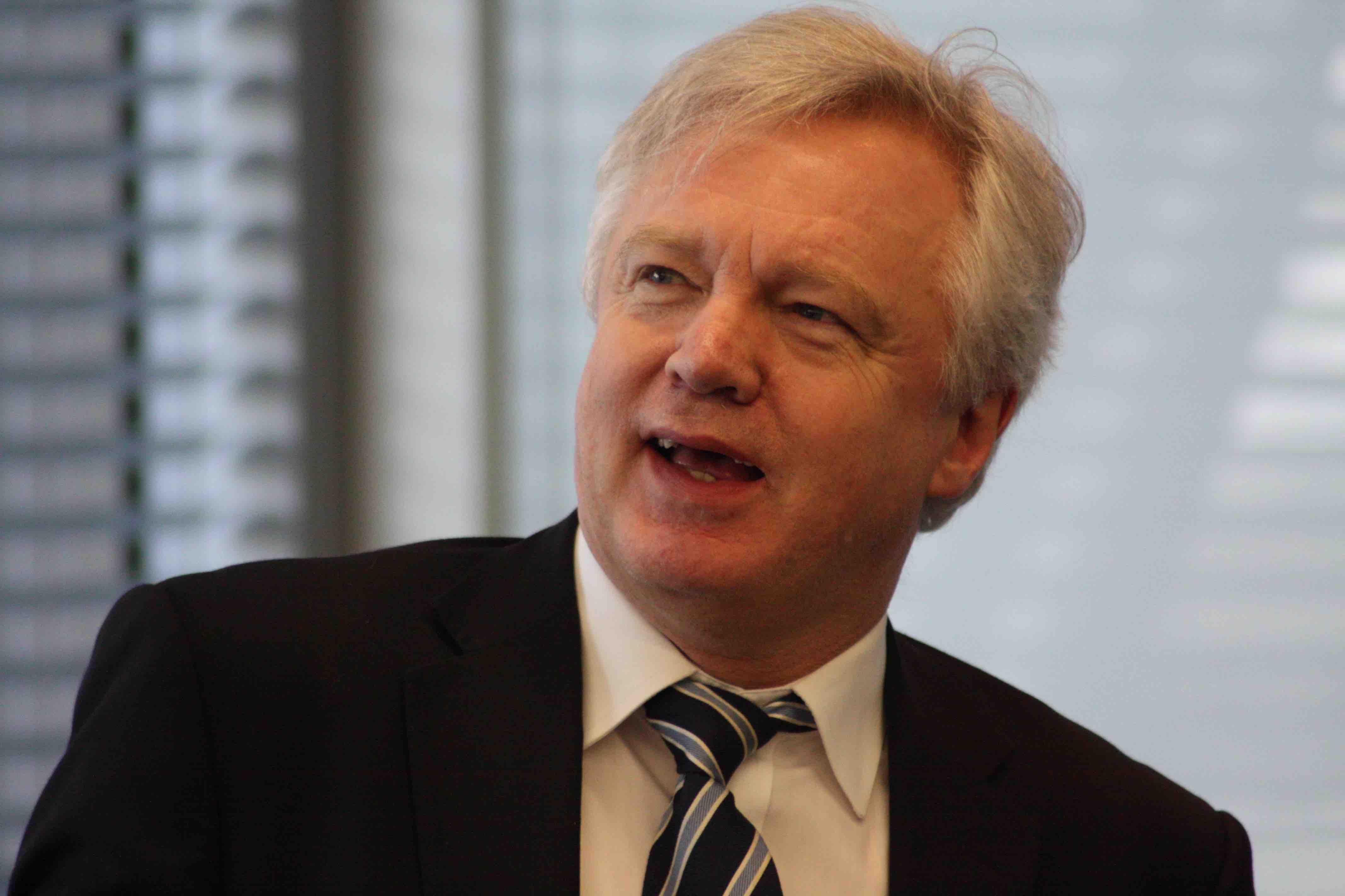 Background Briefing: David Davis's Vienna Speech