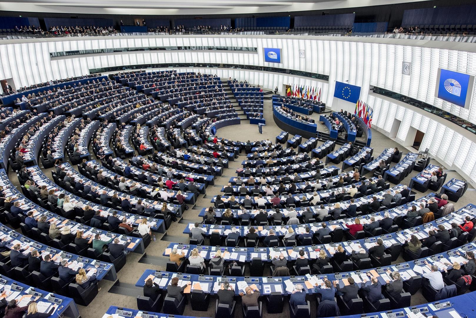 Background Briefing: European Parliament Draft Resolution