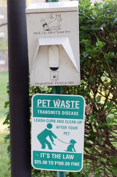 Pet_waste_bags.jpg