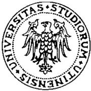 Udine University Hospital Italy