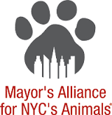Mayors_alliance_logo.png