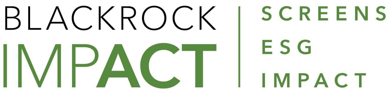 BlackRock_Impact.jpg