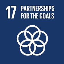 SDG_17.png