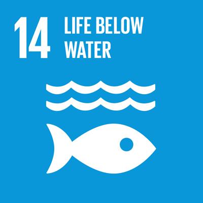 SDG_14.jpg