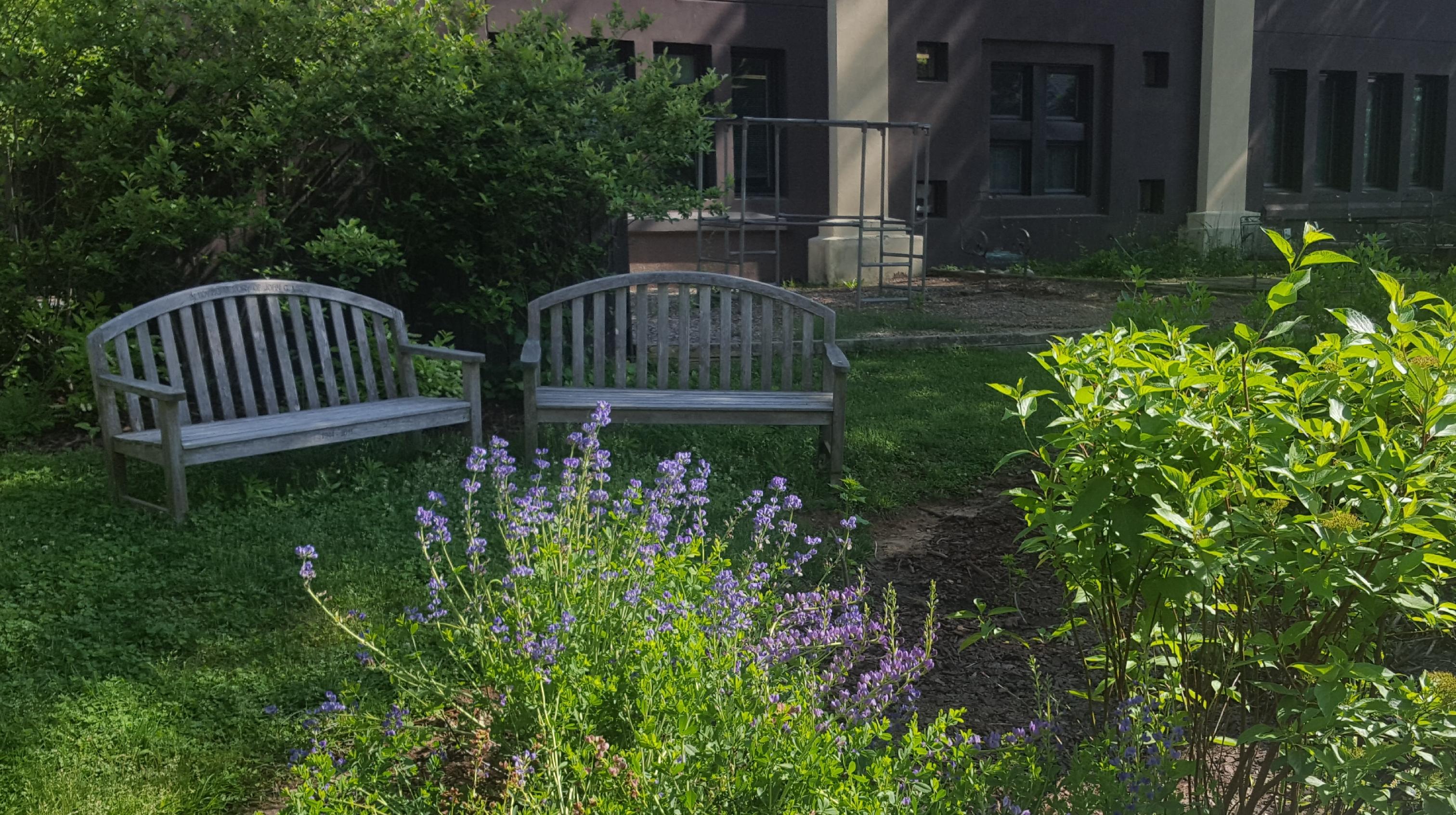 St._James_Episcopal_Rain_Garden.jpg