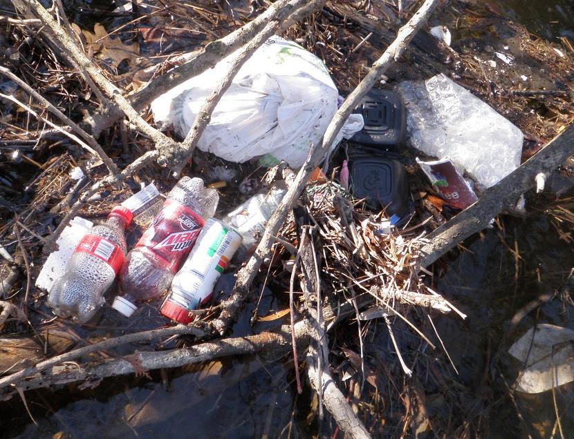 Trash_in_Creek.jpg
