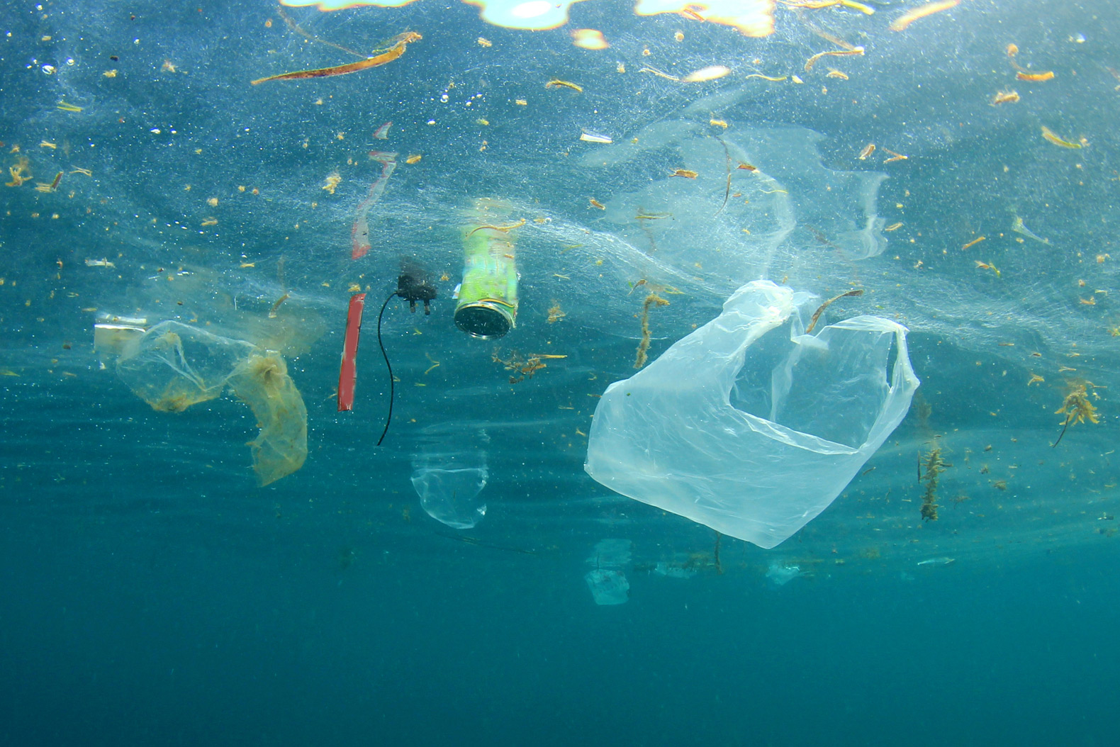 plastic-bag-pollution.jpg
