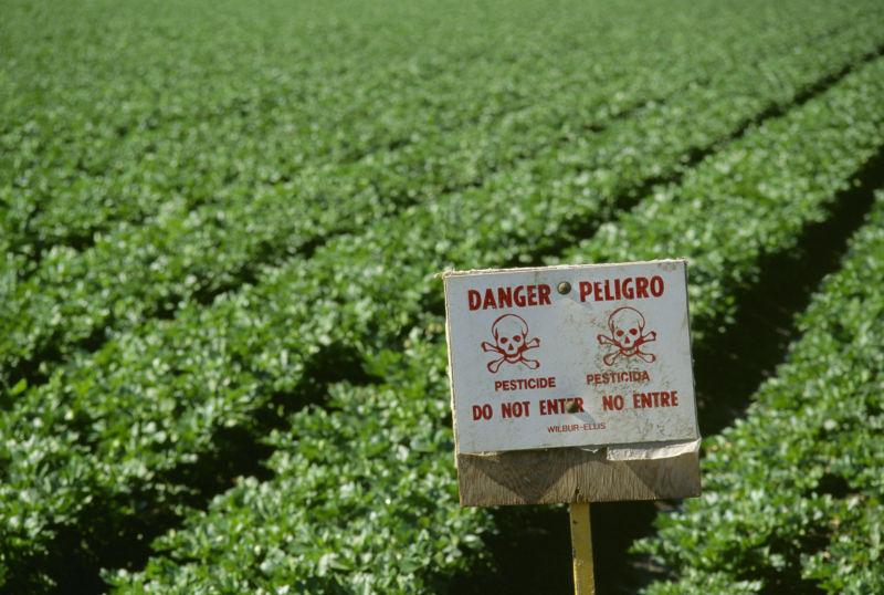 pesticides_crops.jpg