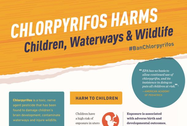 2020_SOPC_Chlorpyrifos_Infographic_Page_1.jpg