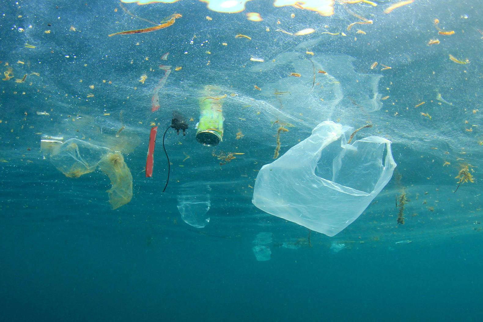 plastic-bag-pollution.jpg