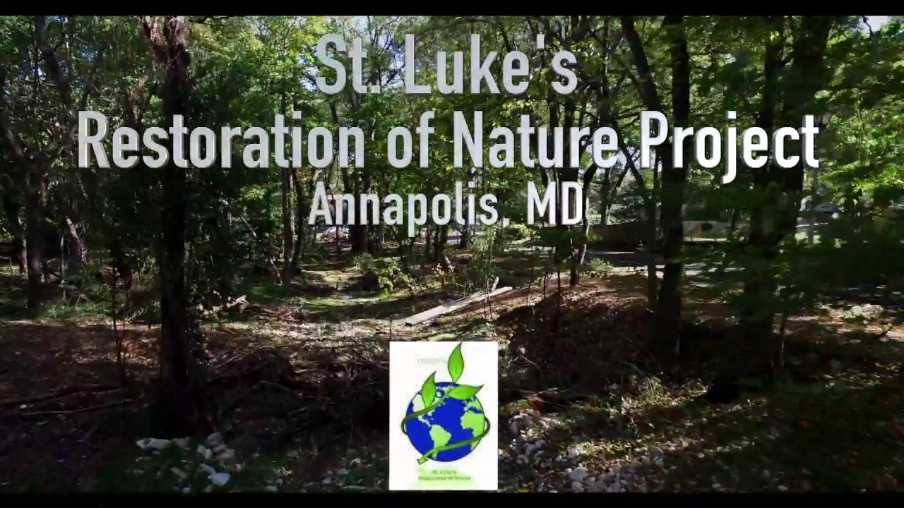 St._Luke_Restoration_of_Nature_Photo.jpg