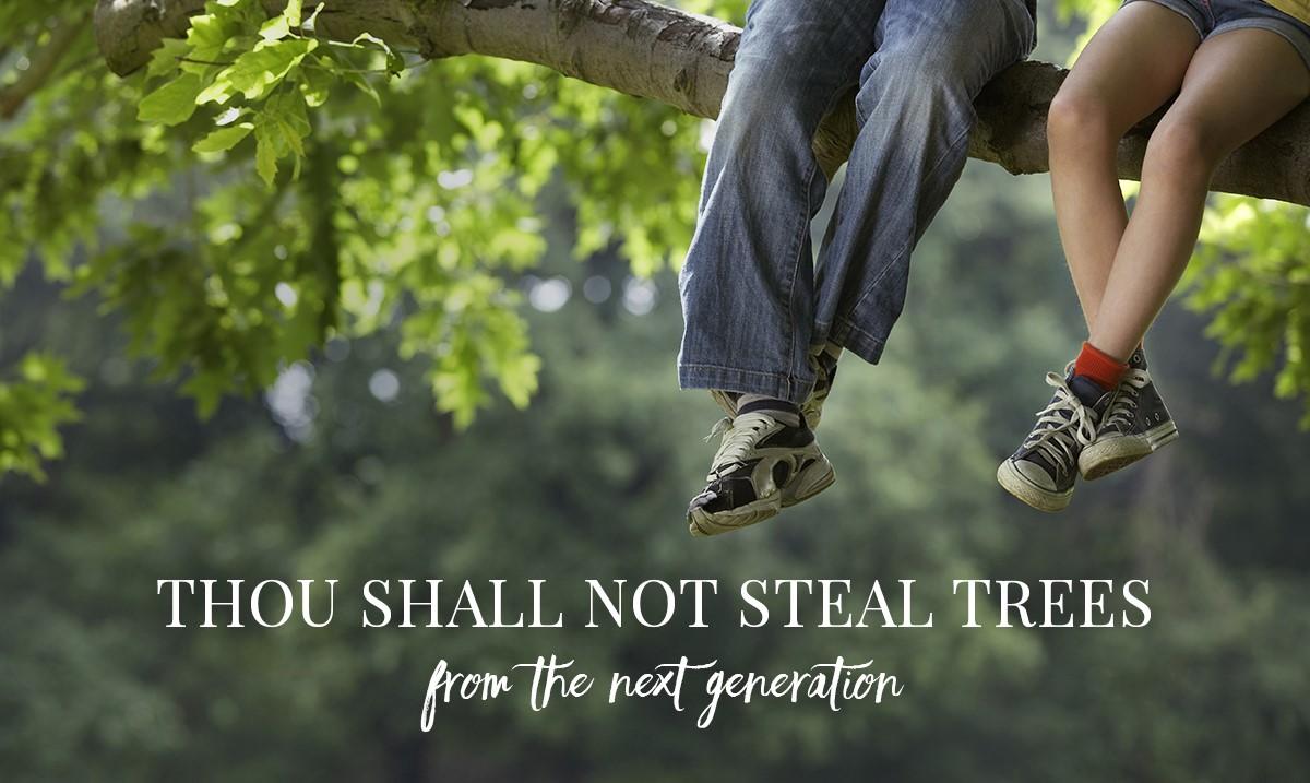 Thou_Shall_Not.jpg