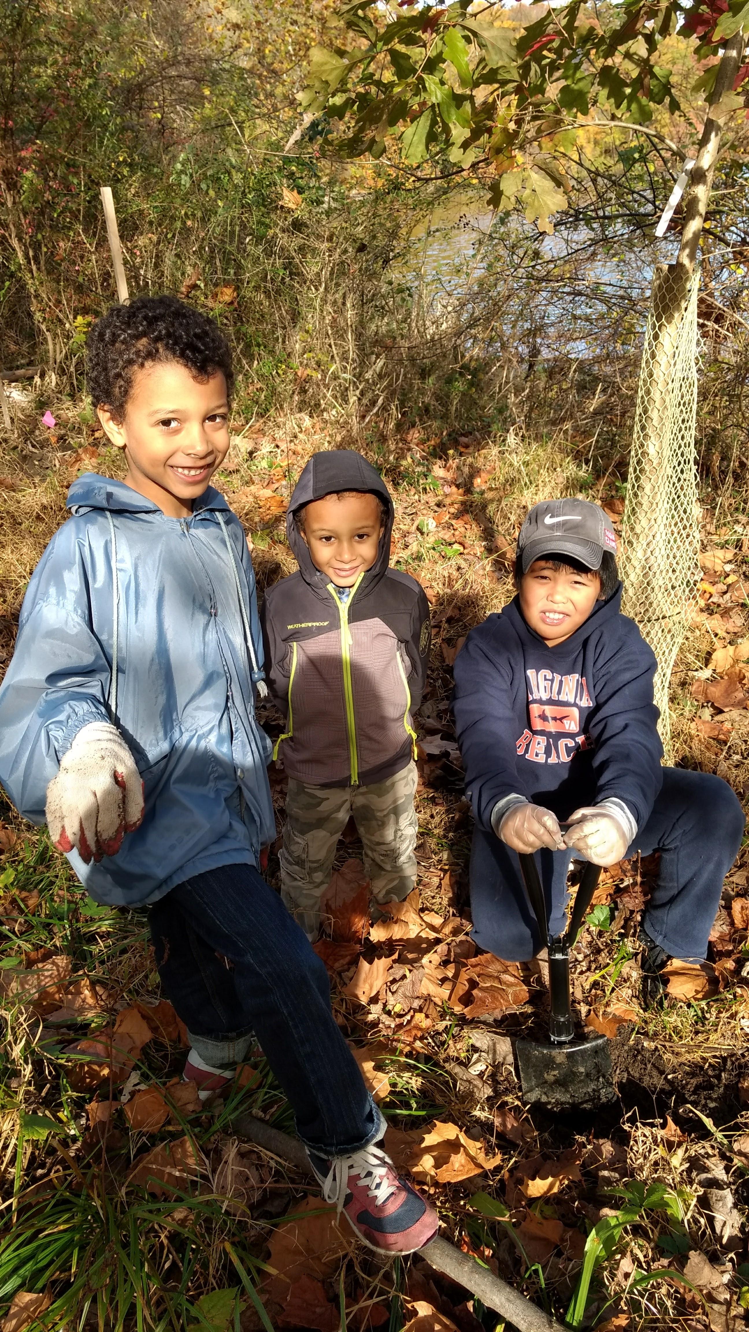 Shrine Kids Trees