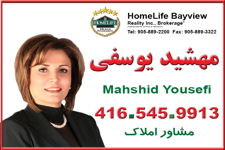 Silver-Mahshid_Yousefi.jpg