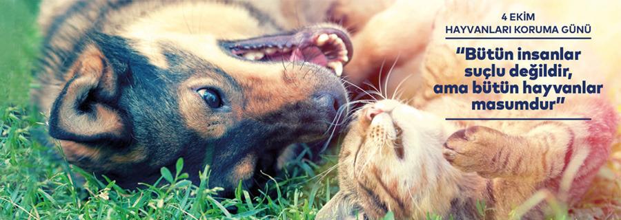 4 Ekim Hayvanları Koruma Günü Kutlu Olsun