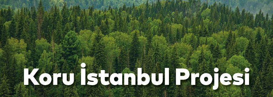 Koru İstanbul Projesi
